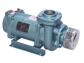 Monoset Open well pump Manufacturer